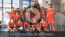 Felicitación Navidad Selección Española Hockey